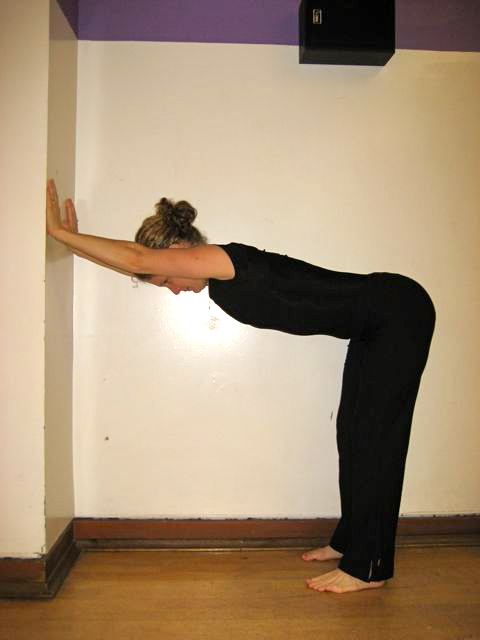 Ardha Adho Mukha Svanasana (1/2 Down dog at the wall)