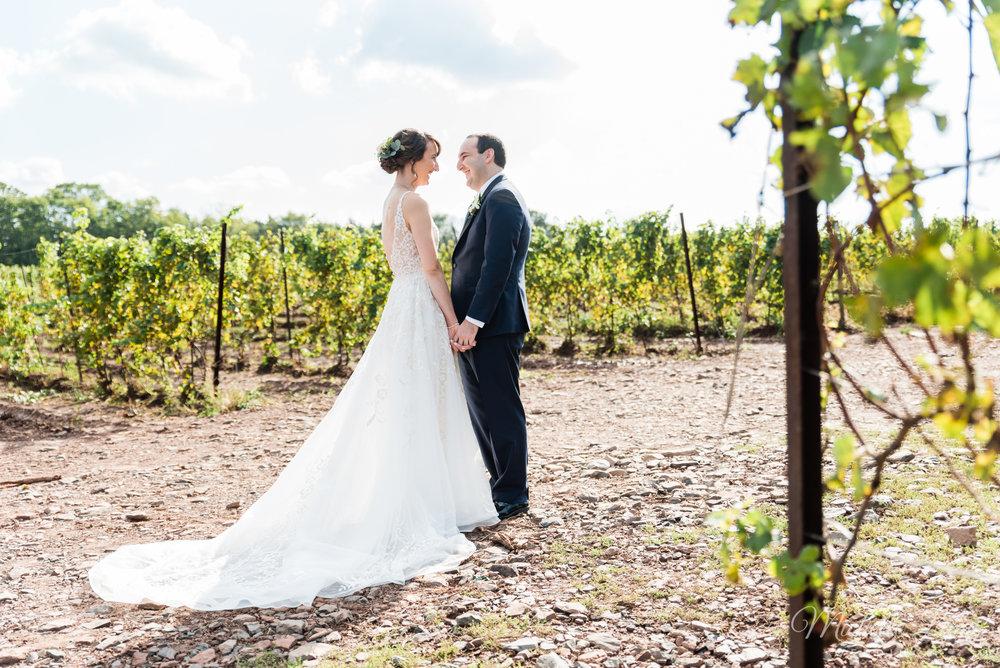 sand-castle-winery-pennsylvania-wedding-photography-37.jpg
