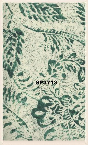 SP3713.jpg