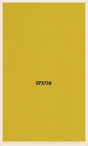 SP3738.jpg