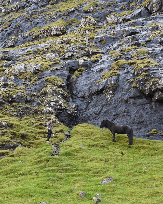 Oops I totally meant to post this last week saying hbd to my favorite @gcbrown! 😬  #wildhorses #hearttoheart #wanderlust #faroeislands 🥰