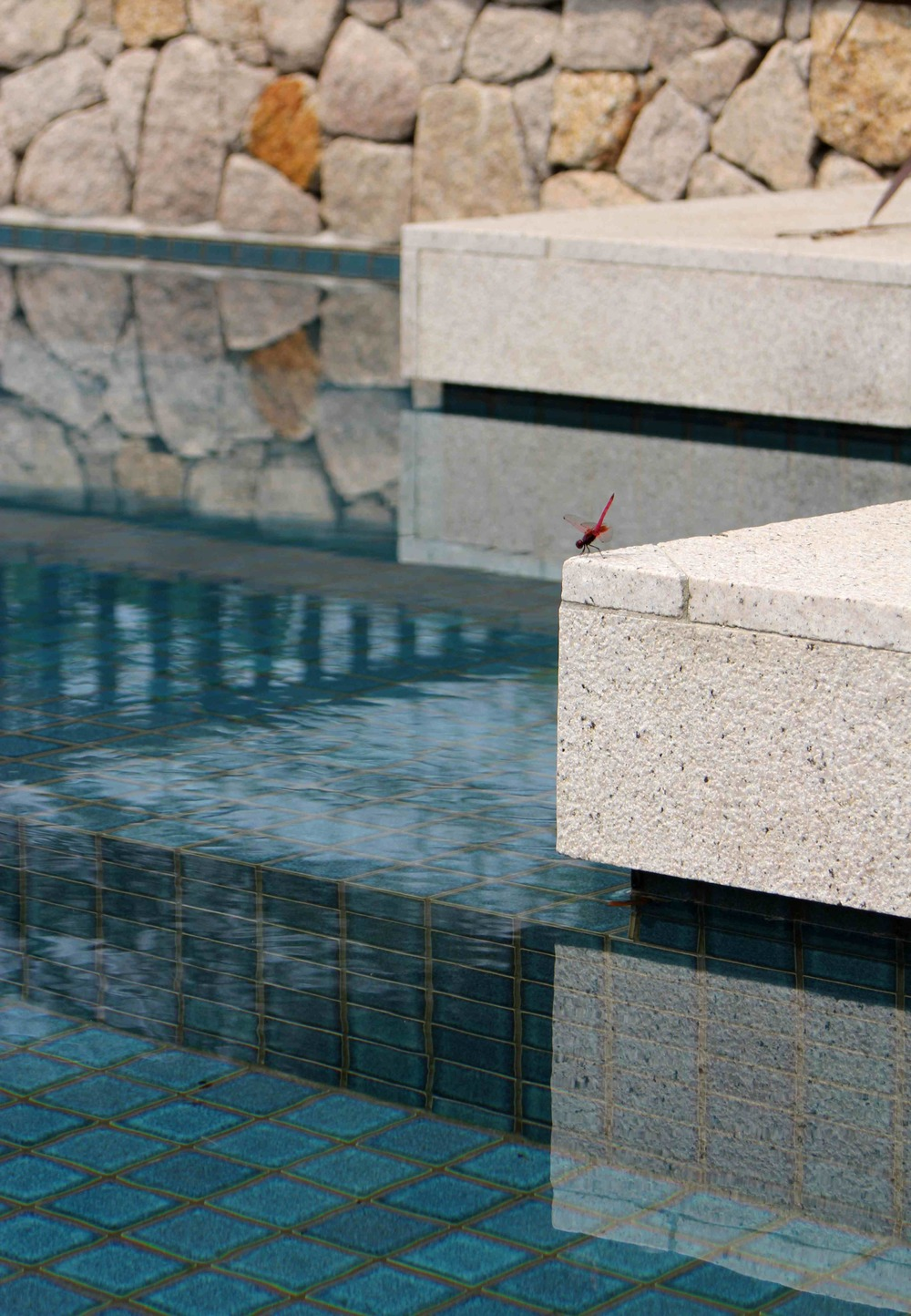 Villa EXHALE - pool detail SM.jpg