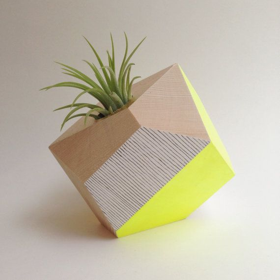 Geometric Planter by Flaneurs Pocket