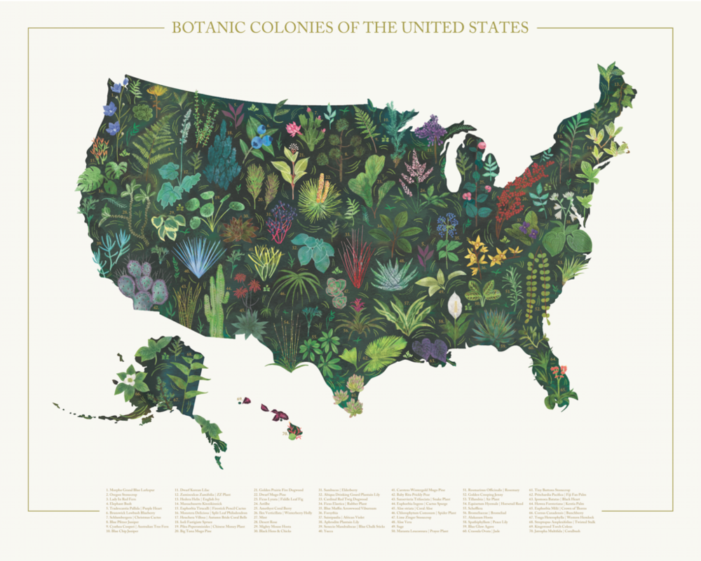 Botanical Colonies of the US by mid goods