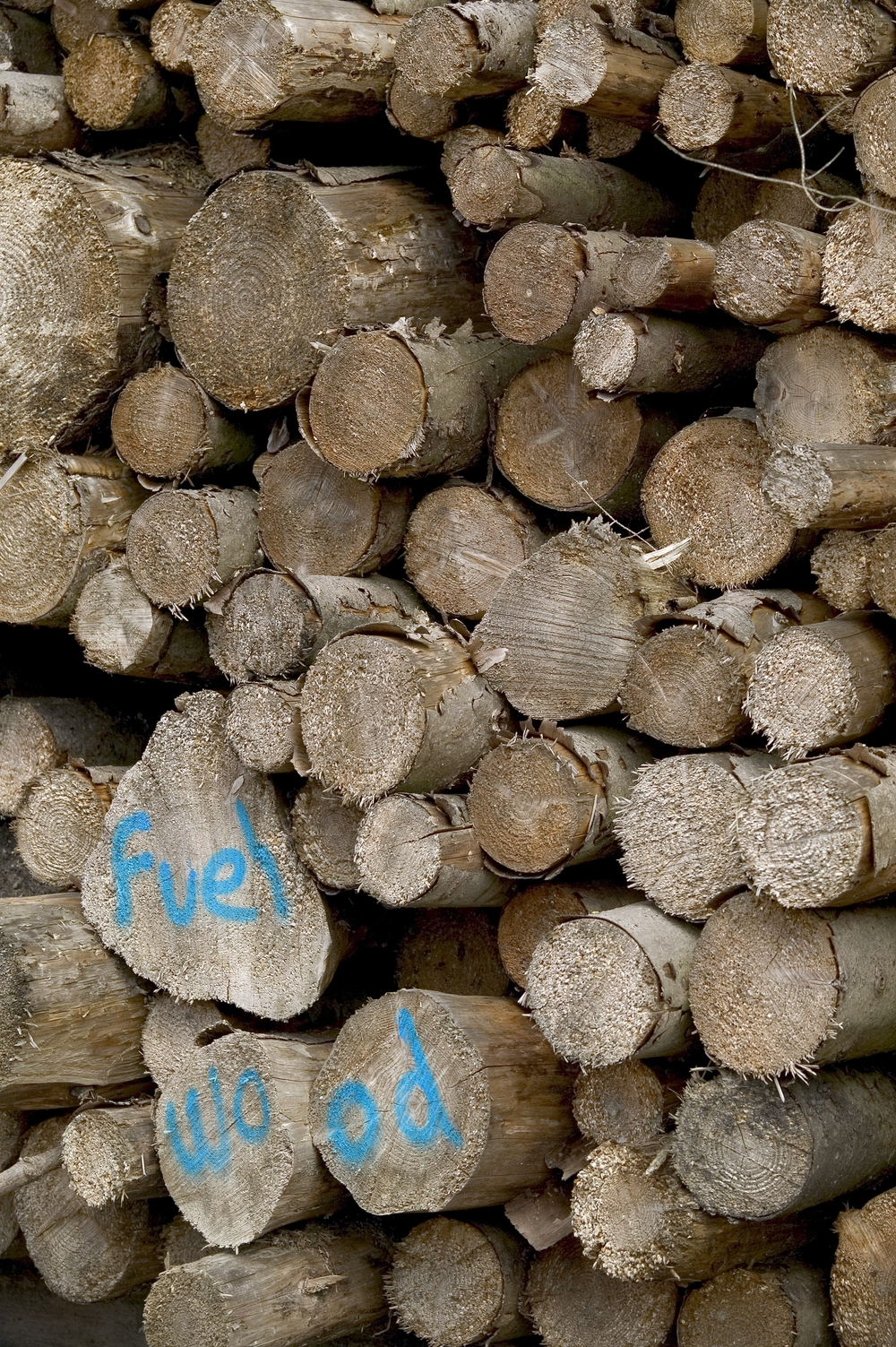 Clean Wood Energy is both economically and environmentally good for Southland