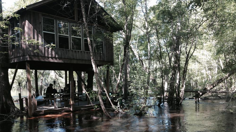 treehouse-back.jpg