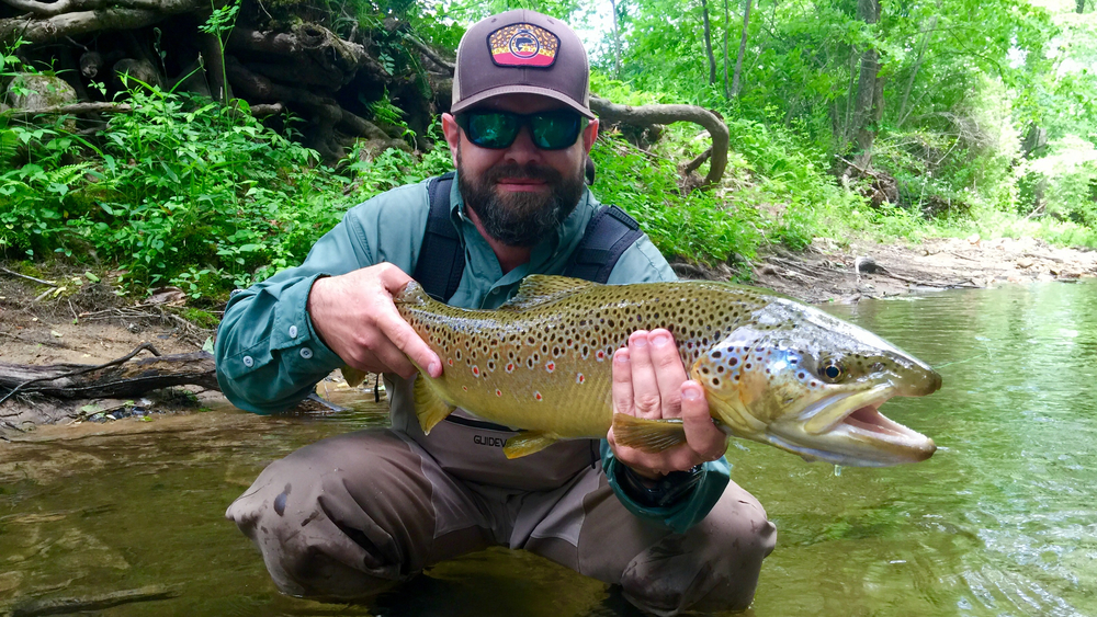 monster-brown-trout2.jpg