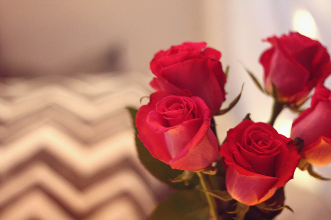 Date night roses