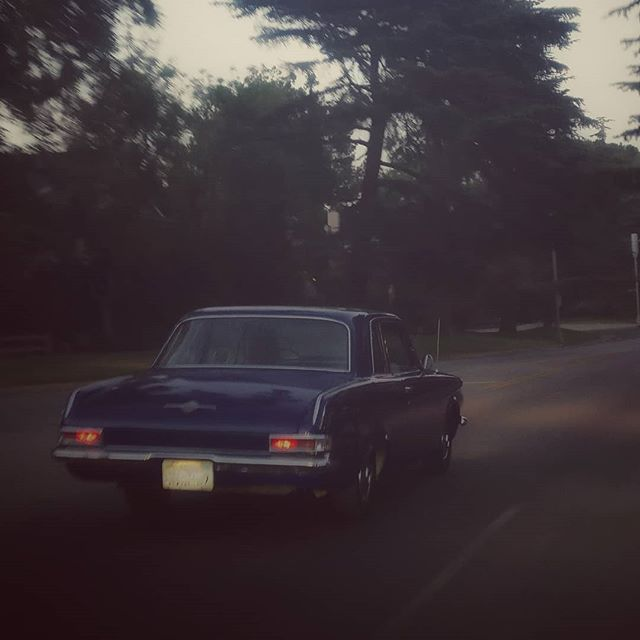 Taking a leap into the past on a scenic Los Feliz drive  after The Early November  and The Dangerous Summer #timedilation #scenicdrive #losfeliz