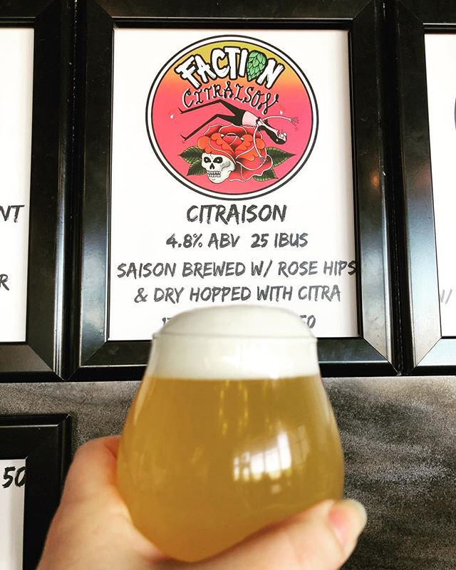 So excited!! We're bottling #Citraison Tomorrow!! Be sure to watch all our stories as @factionbrewing does an #instatakeover 🙌🏼💕✨🍻 #Brewbies #Faction #Collab