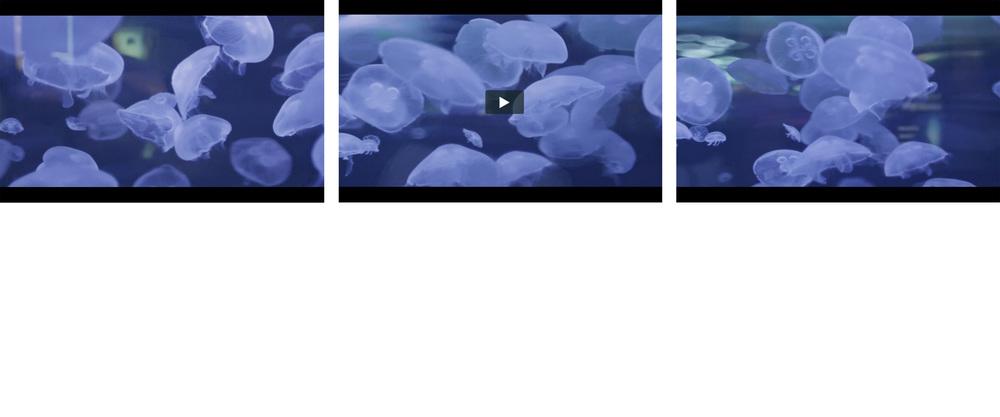 Screen Shot 2014-10-08 at 8.05.42 PM.png