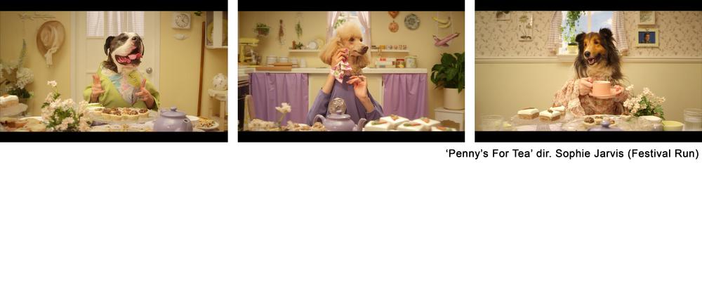 Pennys trio.jpg