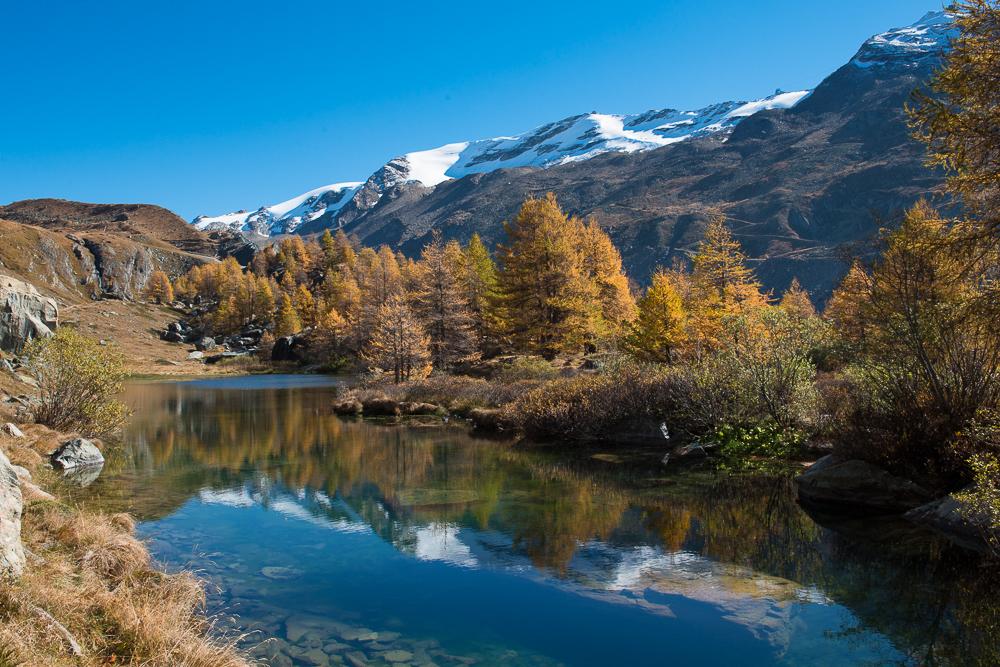 Goldener-Herbst-im-Mattertal-Nr6-(1-von-1).jpg