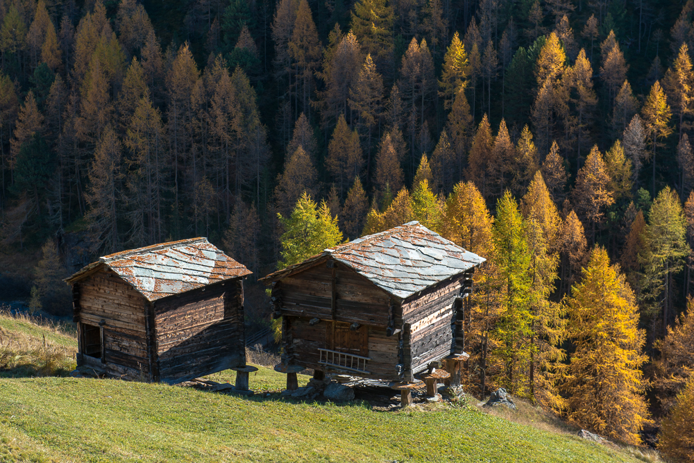 Goldener-Herbst-im-Mattertal-Nr8-(1-von-1).jpg