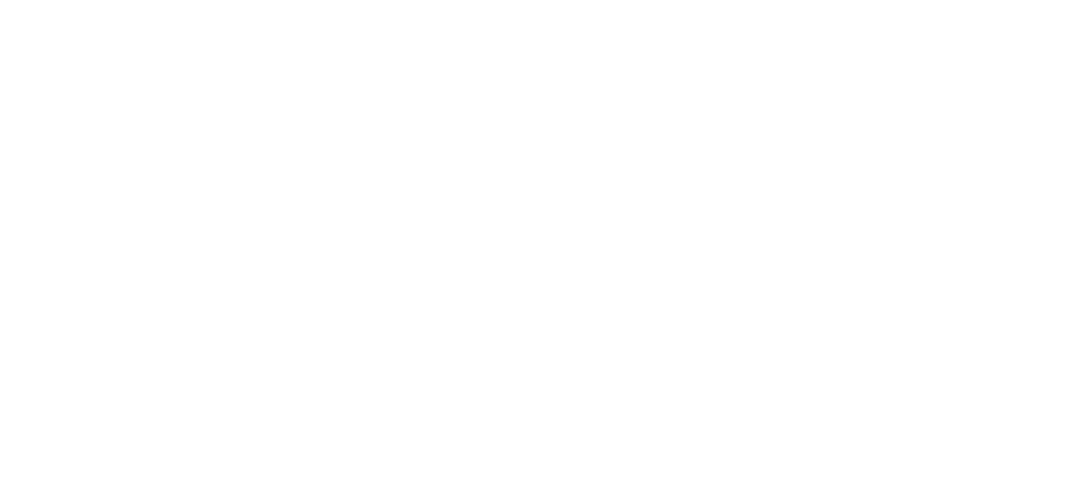 Cashman Auctions