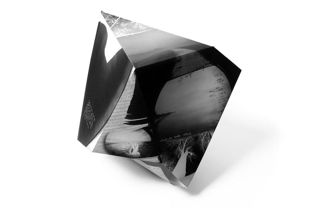 Melancholy Polyhedron. Fisheye.