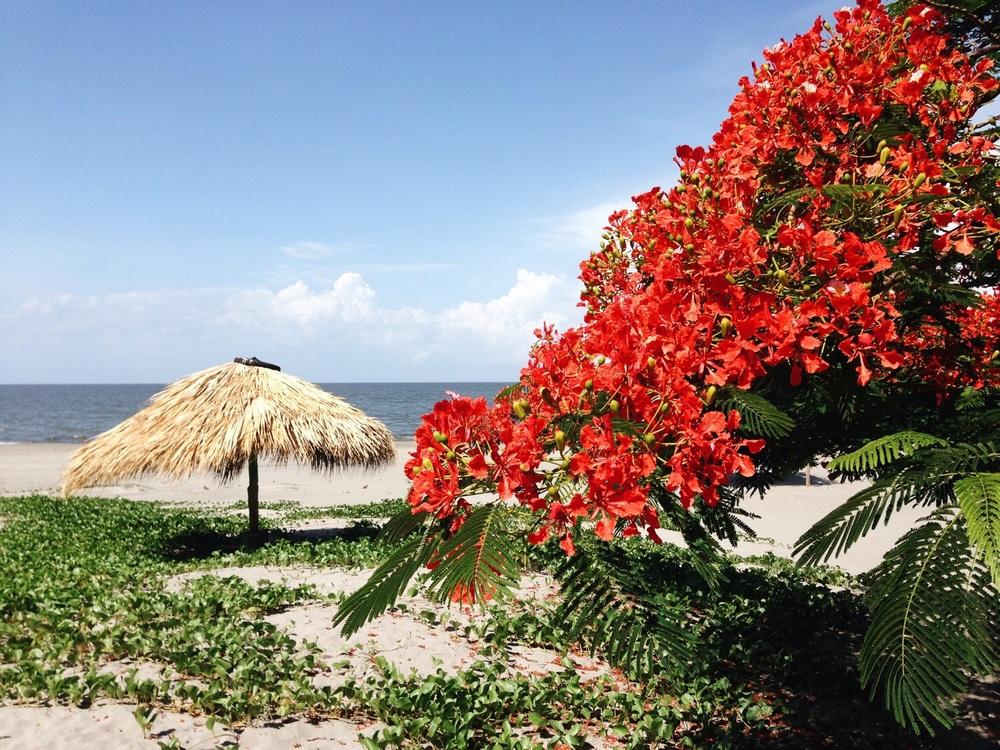 Strand von Santo Domingo.