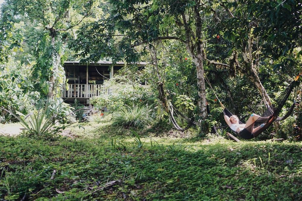 Das Bolita Hostel ist ein Traum für Naturfreunde.