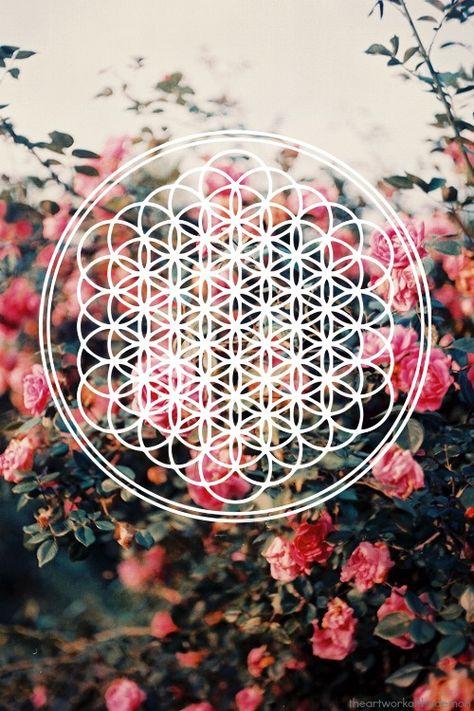 FLOWER OF LIFE!!!