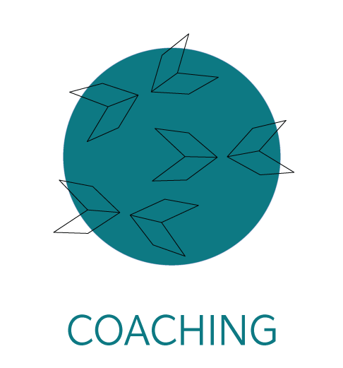 coaching-icon.png