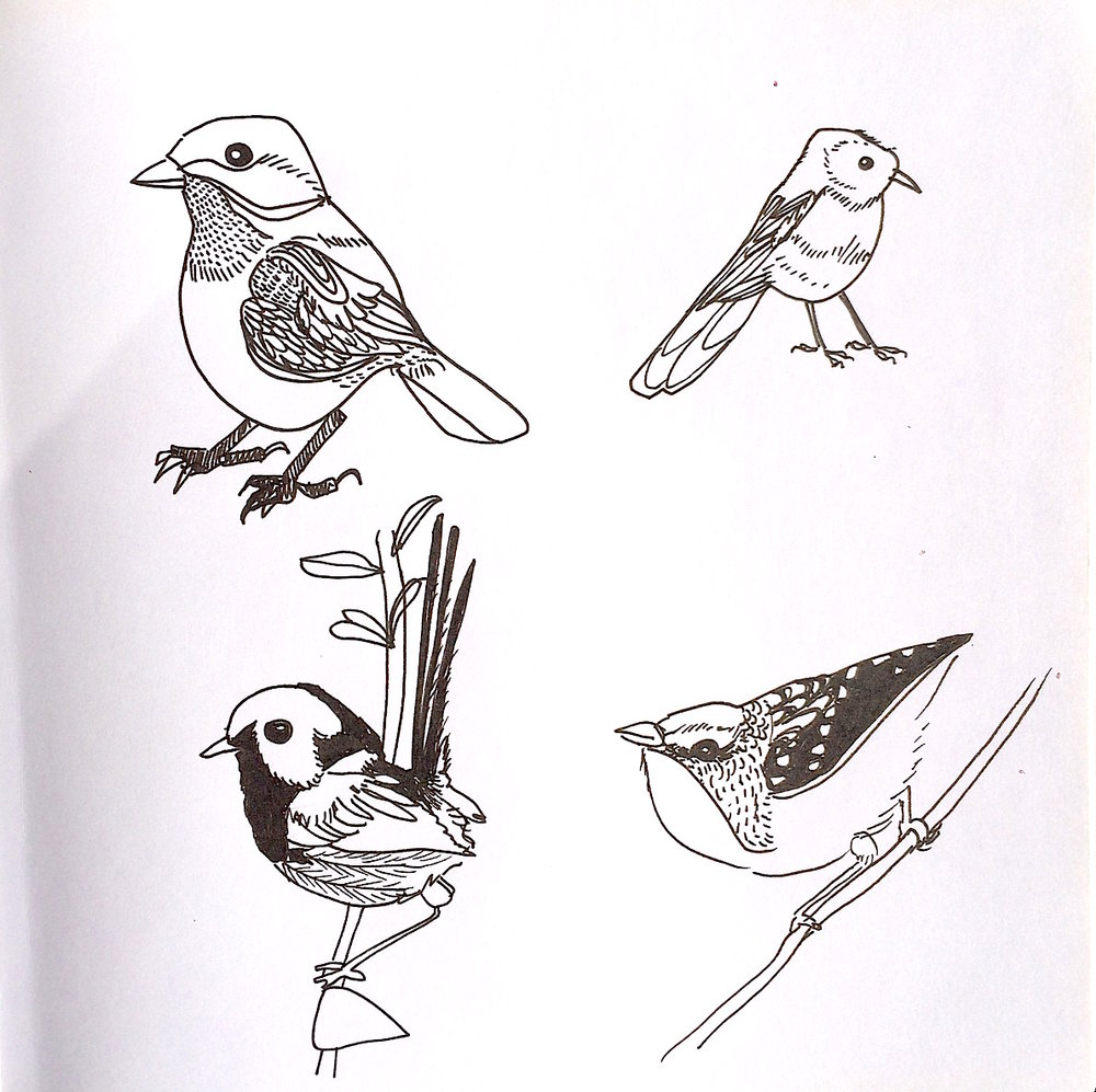 ..... and some birds!