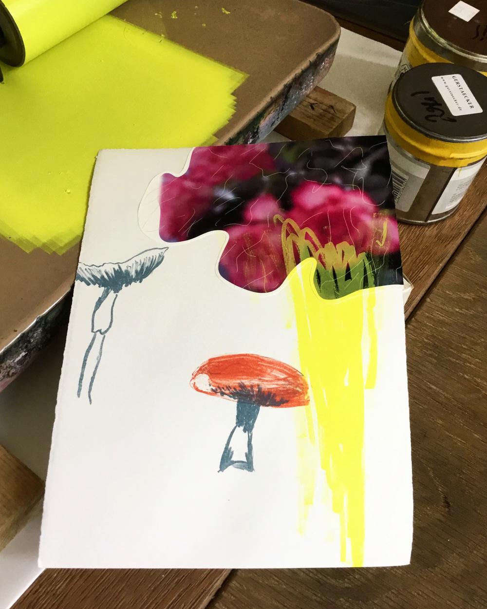 lithogafie en chine collé op papier