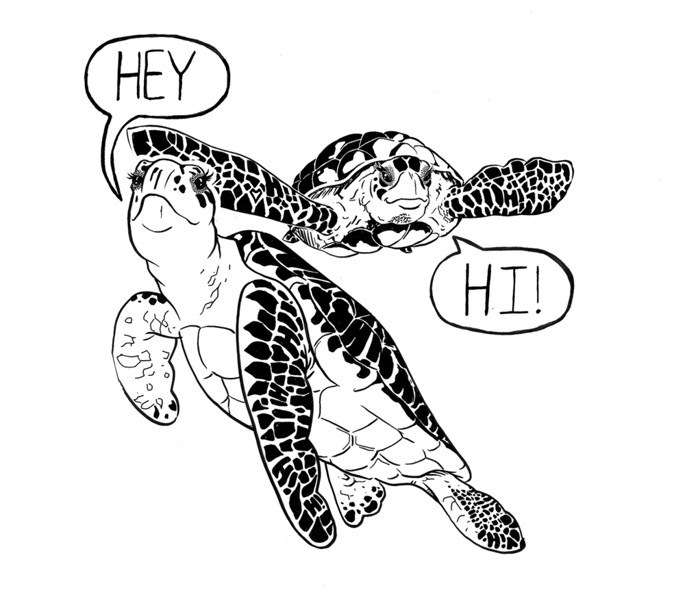 Turtle_tryout03.png