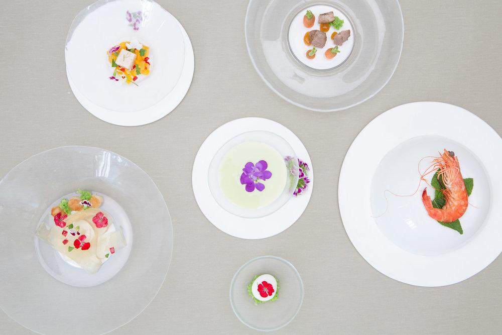 living-plates-lina-saleh-design-products-food-graduate-shows_dezainaa_1