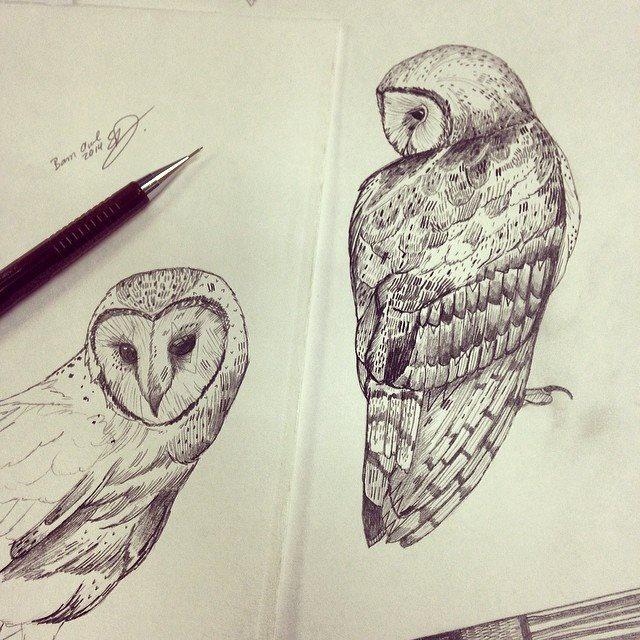 pencilOwl.jpg