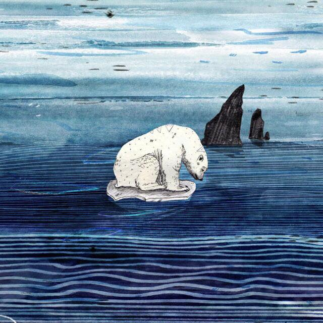 DAY 25 // Polar Bear