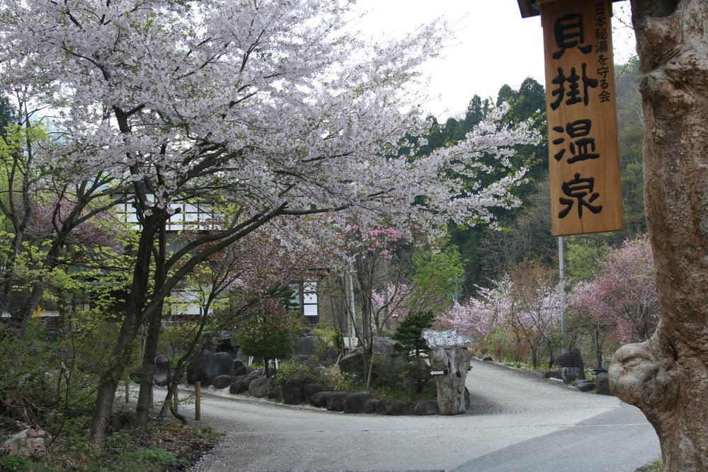 傳統木造建築的「貝掛溫泉」隱身於橫跨清津川的貝掛橋後方山林,讓旅人沉浸於古風懷舊氛圍。