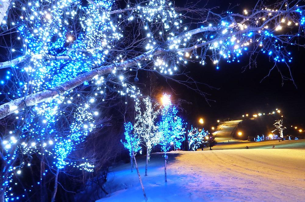 岐阜縣DYNALAND雪場夜間點燈