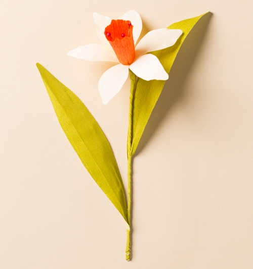 HOW-TO-MAKE-A-PAPER-DAFFODIL.jpg