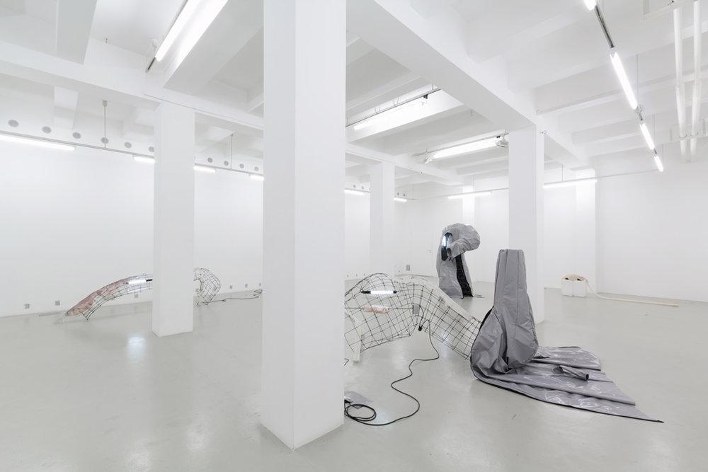 1_01-pakui-hardware-ugnius-gelguda-neringa-cerniauskaite-trafo-gallery-budapest-2017.jpg