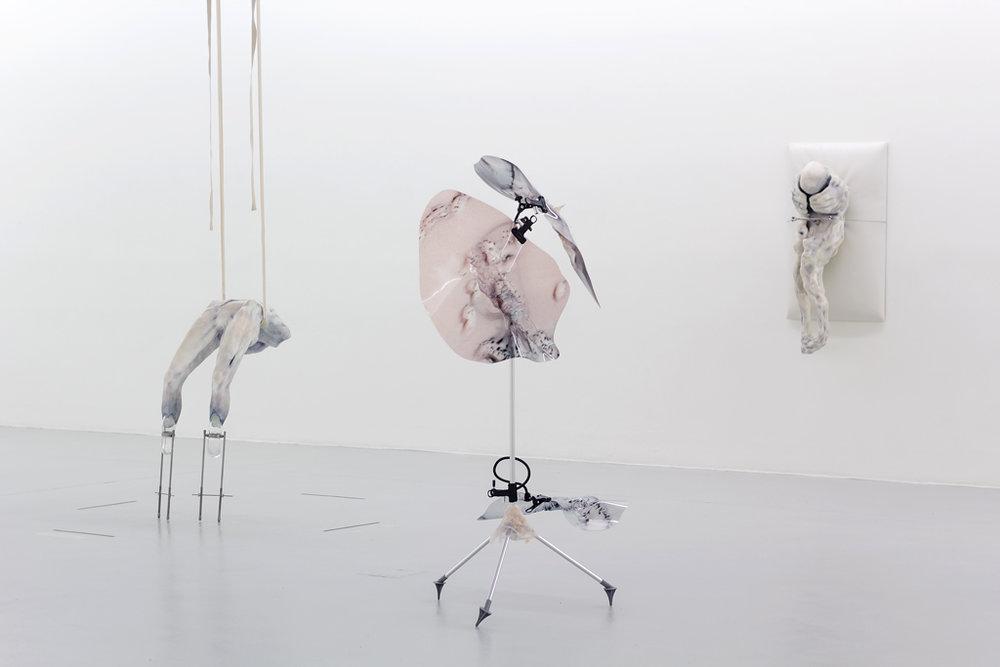 1_08-immortalism-kunstverein-freiburg-pakui-hardware-ugnius-gelguda-neringa-cerniauskaite-2017.jpg