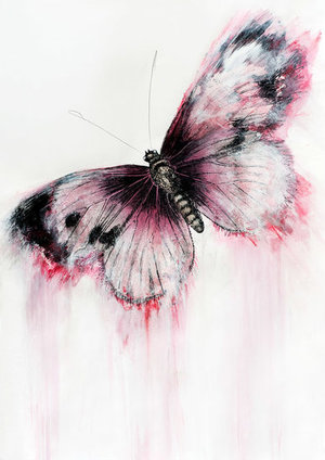 Candy Butterfly - Marion McConaghie