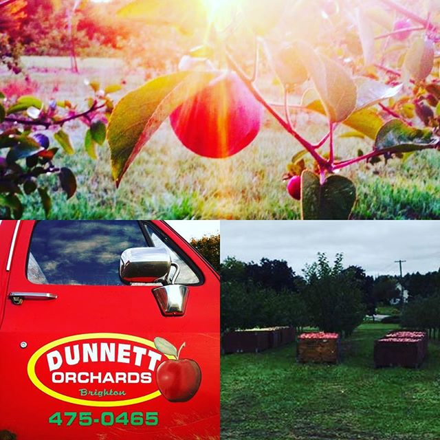 We get asked a lot where our amazing apples come from. Our answer is actually a great part of the Empire story. We get 95% of our apples from our friends at Dunnett Orchards in Brighton.  My (Jenny) connection with the Dunnett family began as a small child, going to Sarah's birthday parties, playing in between the apple trees. Later in life running the annual Terry Fox Run in those orchards. You see The Dunnett's have always been a great Brighton family. When we decided to embark on this adventure the choice was simple. Now five years later we've grow to be great friends with George and Bob. Empire is forever grateful for all their hard work that goes into growing those amazing apples.