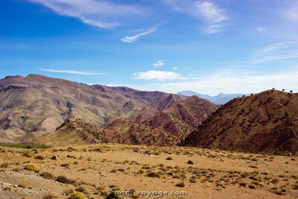 DesertTour12.jpg