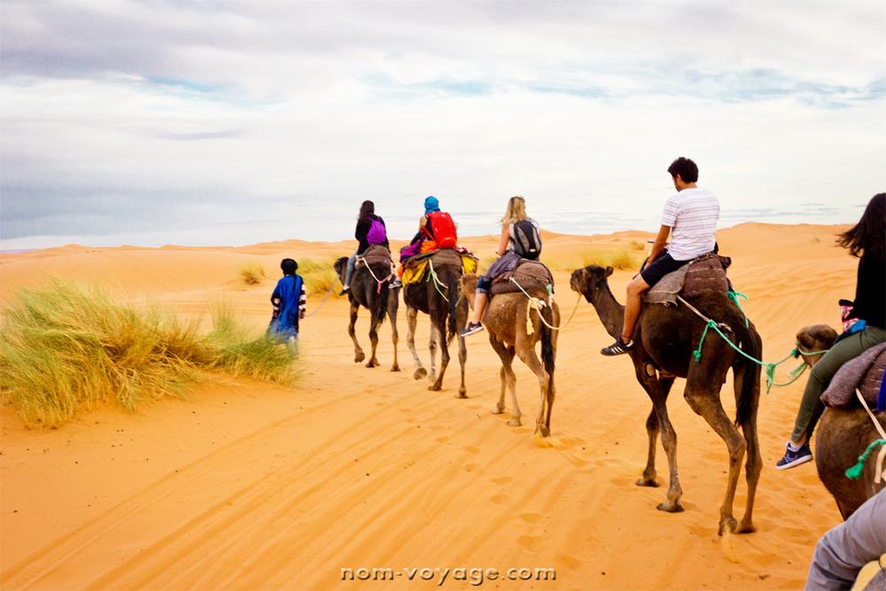 DesertTour25.jpg