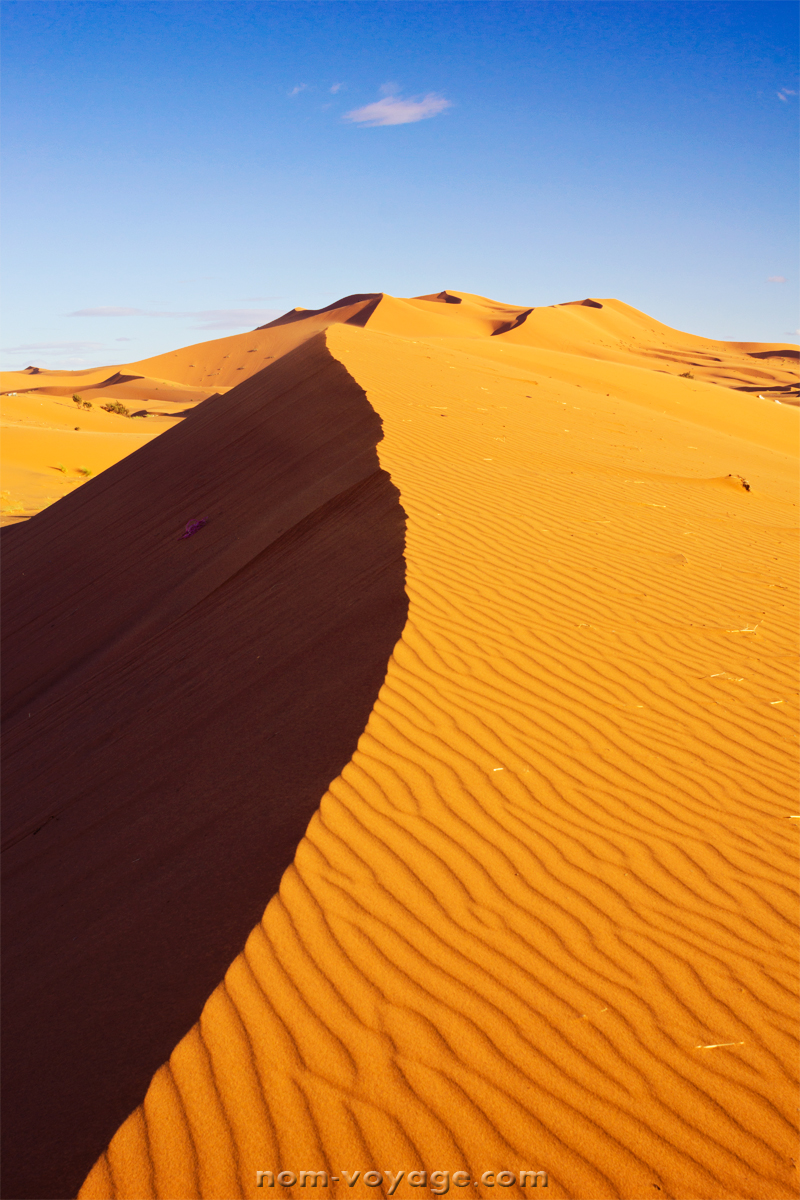 DesertTour33.jpg