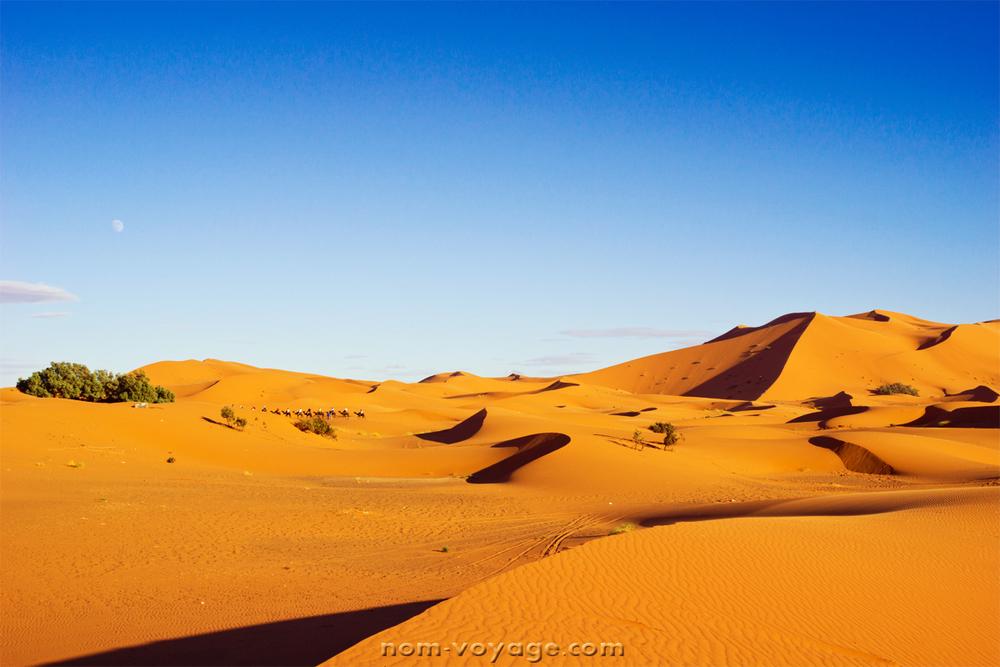 DesertTour34a.jpg