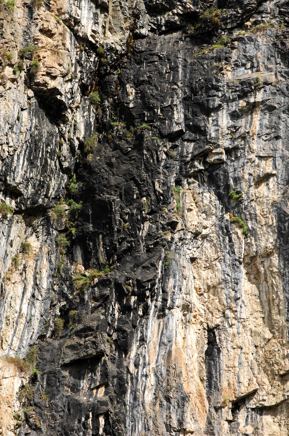 Shilajit on adaptogeeni, kivestä tihkuva luonnon mineraalipiki.
