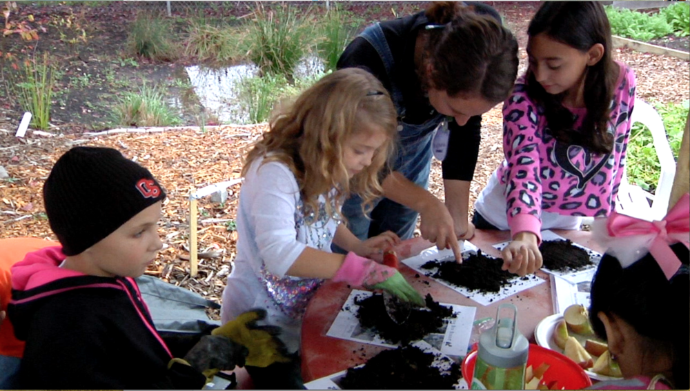 Marion-Polk Food Share provides a fun learning experience through the Youth Gardens program.
