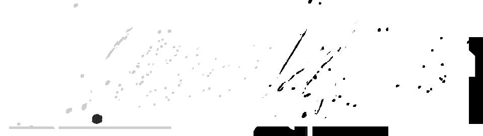 Walk The Night logo.png