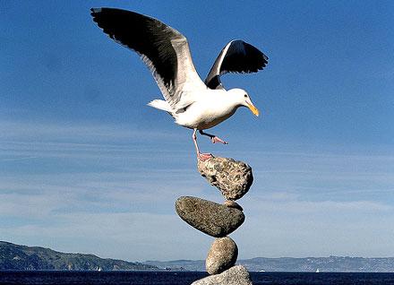 balancing 3.jpg