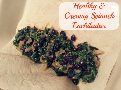 creamy spinach enchiladas
