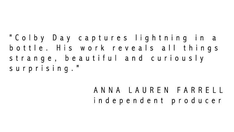 Anna_Lauren_Farrel_Blurb.jpg