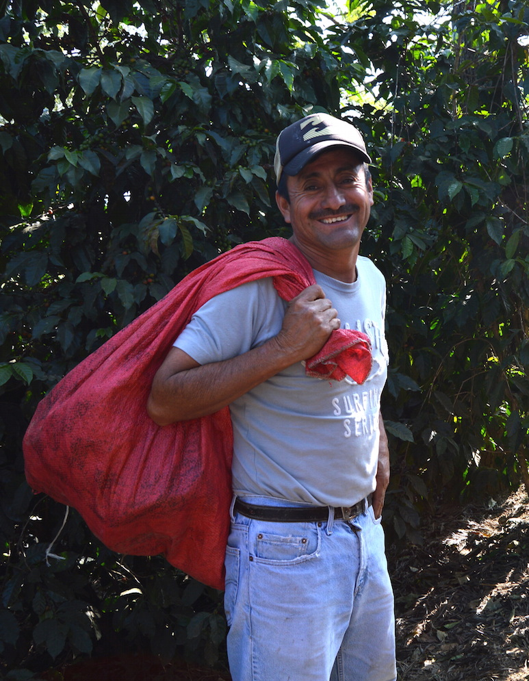 Timoteo Minas of the San Miguel Escobar Cooperative