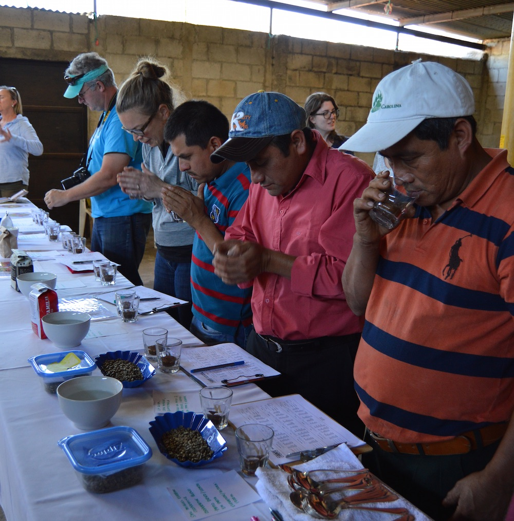 Coffee cupping with members of the San Miguel Escobar Cooperative