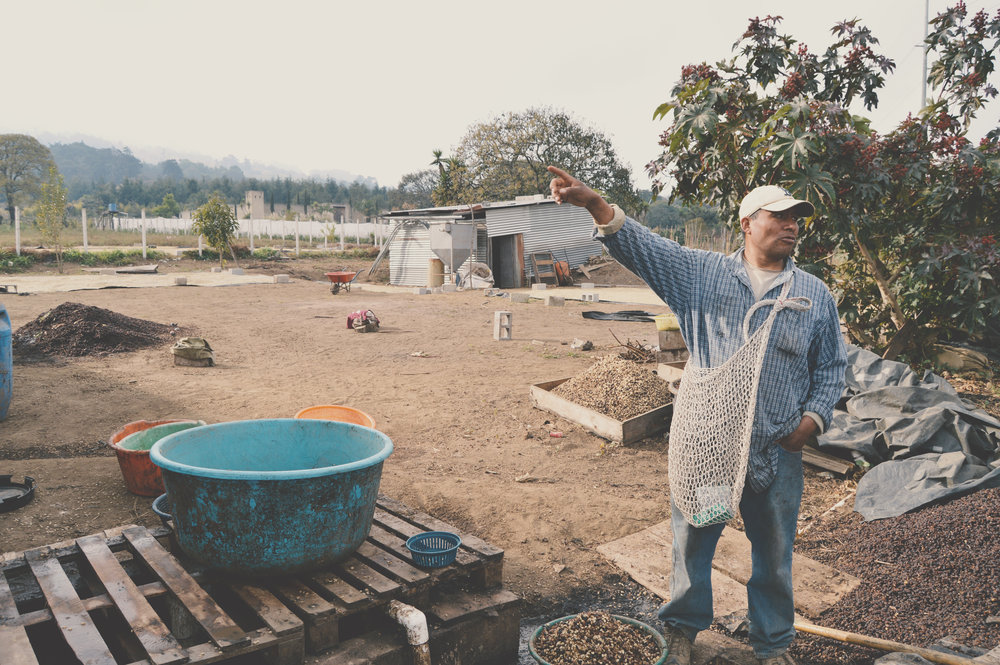 LA ARMONIA HERMOSA - SANTA MARIA DE JESUS, GUATEMALA
